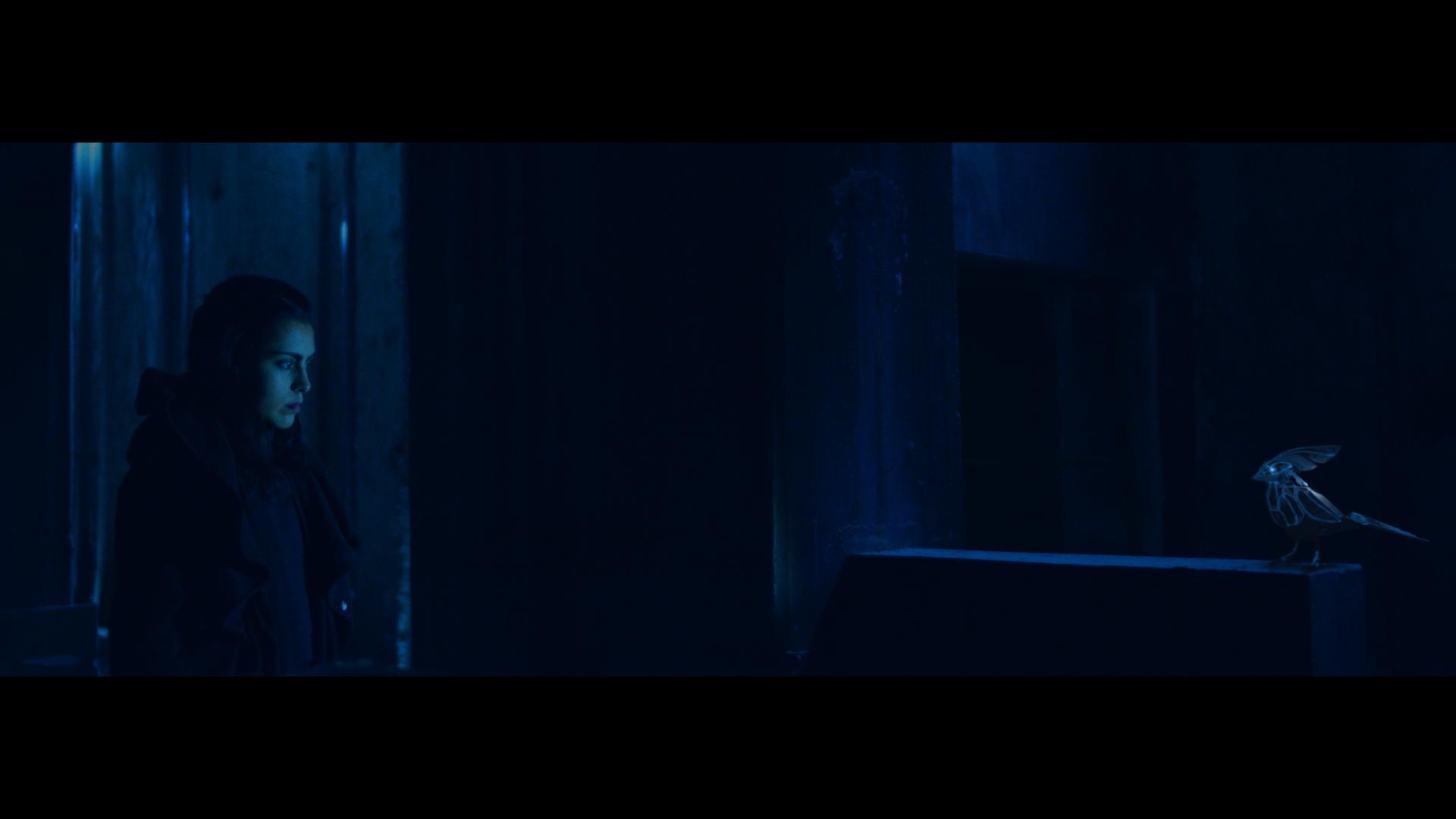 Vetusta Morla estrena el videoclip de 'Consejo de Sabios'