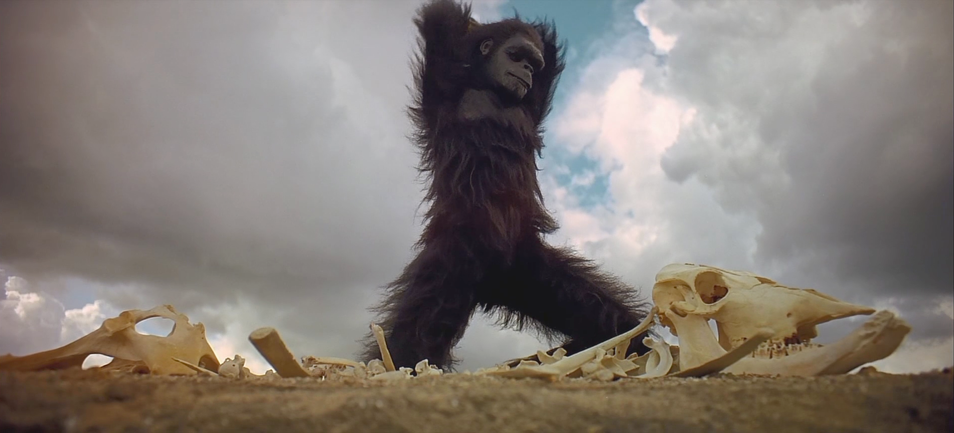 Estrenos: Stanley Kubrick y su 'Odisea en el espacio' regresan a los cines