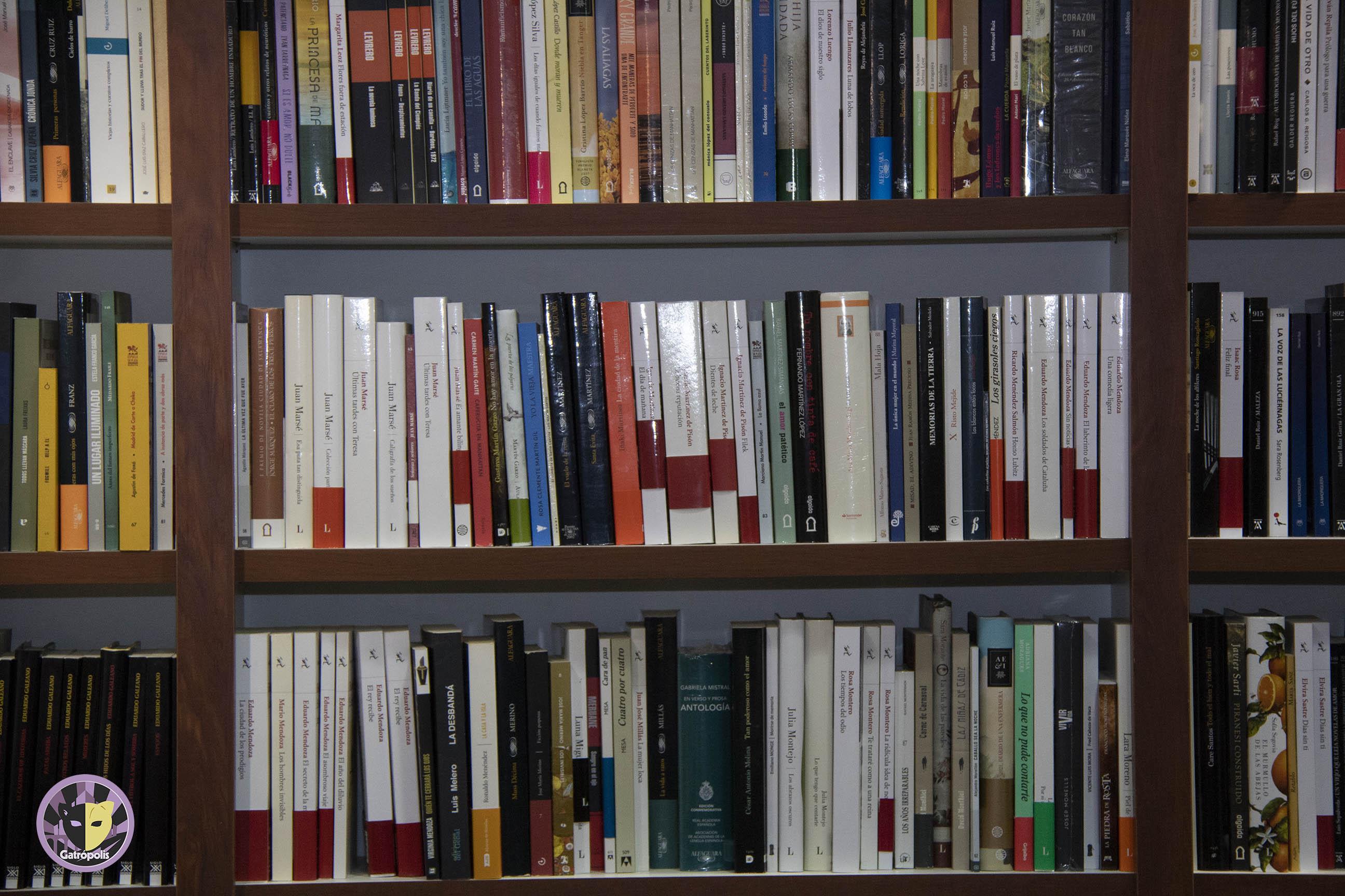 El 8 de noviembre le llega el turno al Día de las librerías