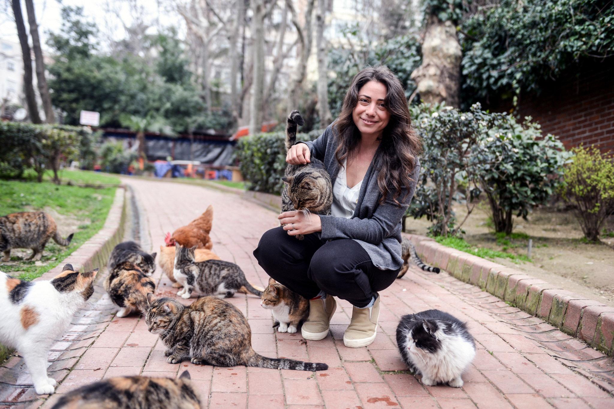 Kedi, el homenaje que los gatos se merecen